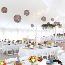 220x220 sq 1485895101993 lighting for a heritage prairie farms wedding