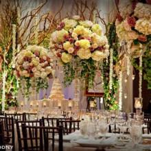 220x220 sq 1379964545509 wedding reception