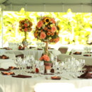 130x130 sq 1384587764152 garden wedding by atmb