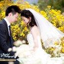 130x130 sq 1291155973739 weddingswww.lucys.com24