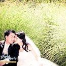 130x130 sq 1291156011239 weddingswww.lucys.com35