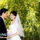 130x130 sq 1291156018145 weddingswww.lucys.com36