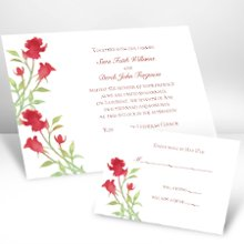 "Watercolor Roses Scarlet Wedding Invitations - Watercolor roses lend a refined quality to this white, non-folding wedding invitation. Your choice of imprint color and typestyle for your wording. Enclosures and thank you notes are printed on non-folding cards. Invitation size: 6 1/4"" x 4 5/8"" Enclosure size: 3 1/2"" x 4 7/8"""