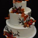 130x130_sq_1367160385748-julian-wedding