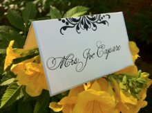 Calligraphy by Jennifer Taylor photo