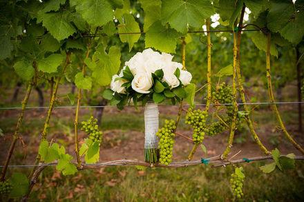 Waterbury Wedding Planners - Reviews for Planners