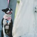 130x130 sq 1431972530072 best of weddings 20140006