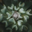 130x130 sq 1431972561237 best of weddings 20140009