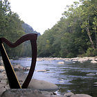 220x220 sq 1477015606136 harp by creek