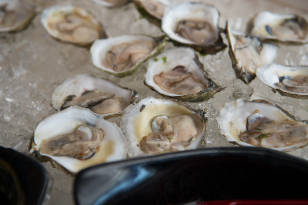 600x600 1486226663852 oysters