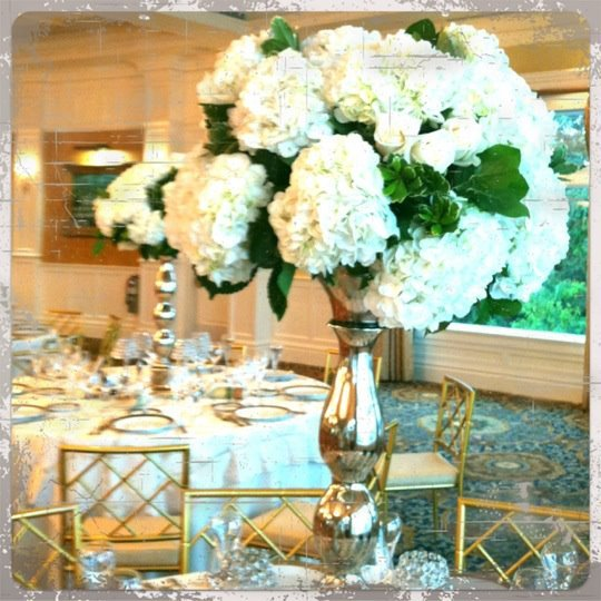 1352312360899 558312509367452422886753113402n Toms River wedding florist