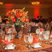 220x220 sq 1448912709 d8862f3d9278f2dc 1413903782870 summit wedding