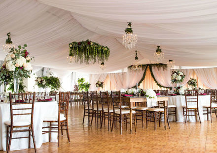 michigan wedding decor lighting reviews for 67 decor lighting. Black Bedroom Furniture Sets. Home Design Ideas