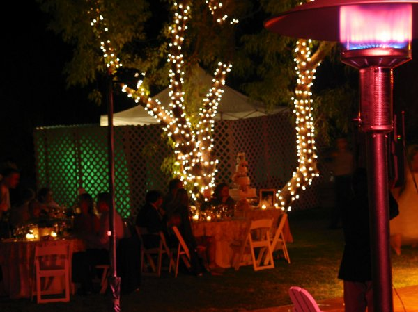 photo 6 of A V Party Rentals
