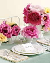 220x220_1224555204054-weddingshowertable
