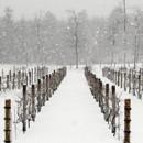 130x130 sq 1420732921677 zorvino vineyards winter
