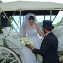 130x130 sq 1349724185595 weddingdoughelpingbride