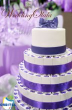 220x220 1262277315846 purplefavorcakewithrealcaketoppercopy