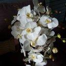 130x130 sq 1276813407314 orchid