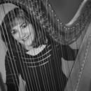 130x130 sq 1428249438145 harp  bw looking through strings