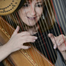 130x130 sq 1428249544400 harp   playing through strings