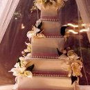 130x130 sq 1361997747972 weddingcakewsugarflowers