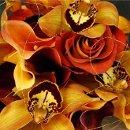 130x130_sq_1225479154984-orange