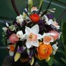 130x130 sq 1240844020265 flowers2009231