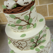 220x220 sq 1494336331924 birch tree cake 2