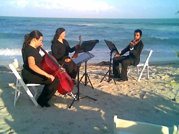 photo 3 of Miami Wedding Guitarist & Bands
