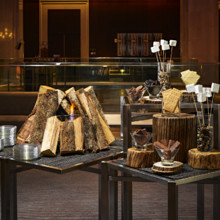 220x220 sq 1502217231088 smore station 1radisson blu minneapolis downtown