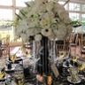 Gold Events LLC-Samantha Goldberg & Co