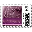 130x130 sq 1226170534906 magenta rose january wedding small postage p172602417970663477vldr 325