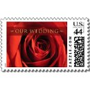 130x130 sq 1243556036589 ourweddingredrosemediumpostagep172813155109806070anr9r500