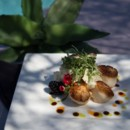 130x130 sq 1476121246389 plated scallops