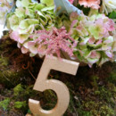 130x130 sq 1445525552902 montreal garden theme wedding flowers decorations