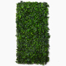 130x130 sq 1420207141254 ivy wall decormzcgz06050ww