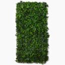 130x130 sq 1420207141254 ivy wall decormzcgz06050ww