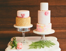 220x220_1387472812991-shannie-cakes-potential-main-image