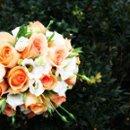 130x130 sq 1229982256639 rose