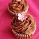 130x130_sq_1240415761875-cupcakesforcancer015