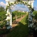 130x130 sq 1467153298 5b88c7818c49e95f amy   blake wedding arch