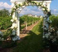 220x220 1467153298 5b88c7818c49e95f amy   blake wedding arch
