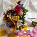 130x130 sq 1403798496452 peach lily