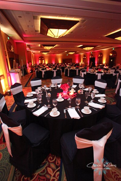 photo 1 of Expert Wedding Productions, DJ / Photo Booth/Flip Books Joe Lorenzo and Associates
