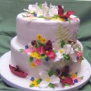 130x130 sq 1234472425564 trilliumsandwildflowers