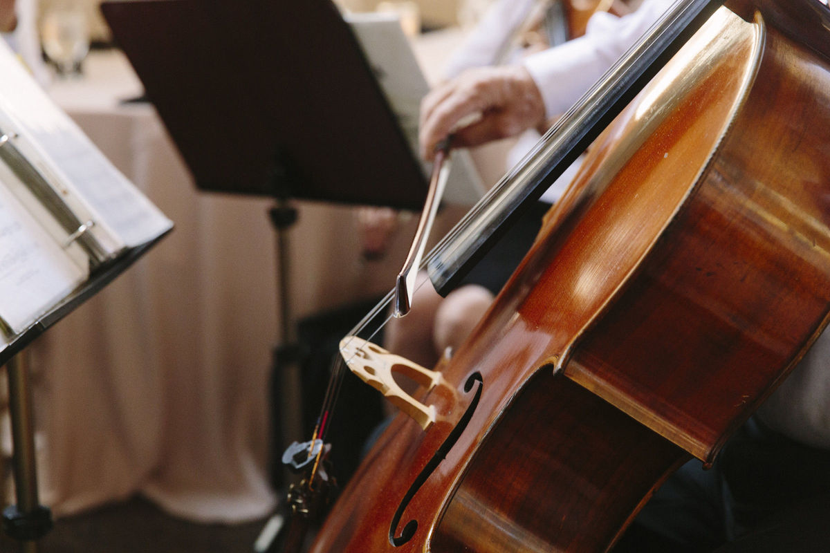 Sacramento Wedding Musicians