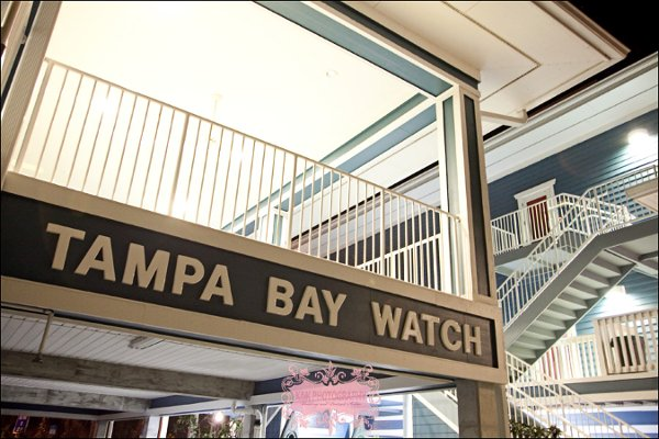 photo 25 of Tampa Bay Watch