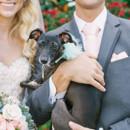 130x130 sq 1478186485841 postcard inn wedding photographer 17