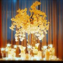 220x220 sq 1414601255978 wholesale glass vase